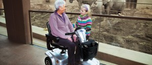 MEDICAL THIRY-DEPLACEMENT---SCOOTER-LEO-INVACARE